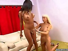 Two tranny babes suck on each others hard cocks