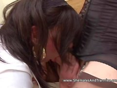 Brunette shemales fuck each other