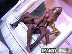 Hot Shemale Gets Big Black Cock Banged