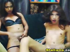 Slutty Shemale Duo Cumming Hard On Fellow Shemale