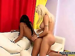 Hot blonde shemale fucking a brunette tranny anally