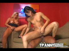 Busty Trannies Interracial Threesome