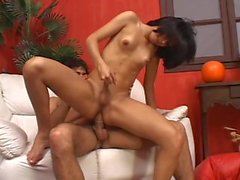 THE NEW TGIRL 3 - Scene 4