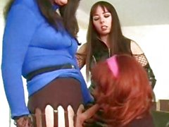 A pair of trannies and a dominatrix have fun