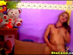 Wicked cute webcam shemale has a sexy cock