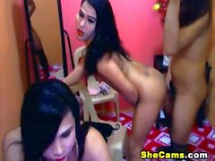 Three Shemales in a Hot Orgy Party