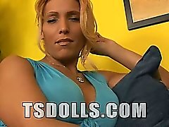Shawna is a new gorgeous TS Doll. She is a blonde babe